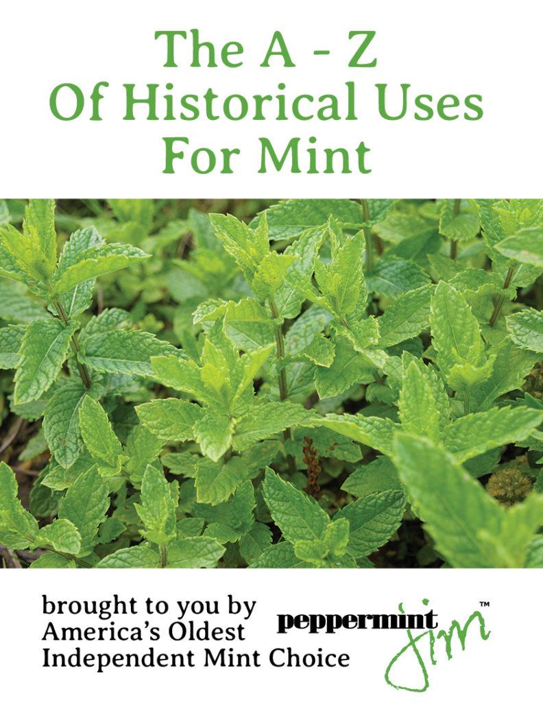 About Mint – Peppermint Jim